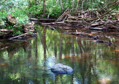 Upe vijas cauri ciematam, bet tomēr tā ir pavisam neskarta