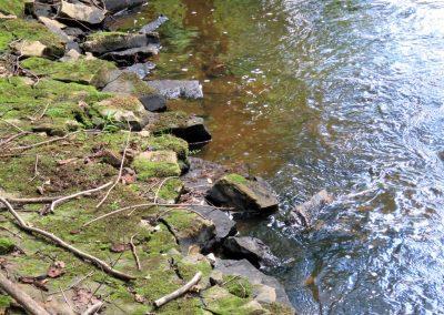 Upe, kuras krasti pamazām salūzt
