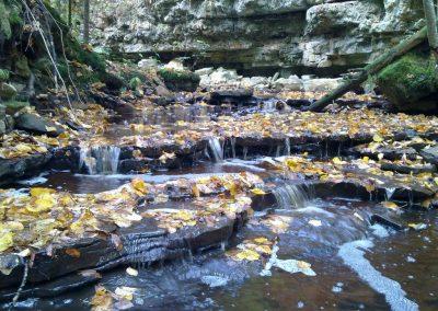 Kalamecu grava rudenī