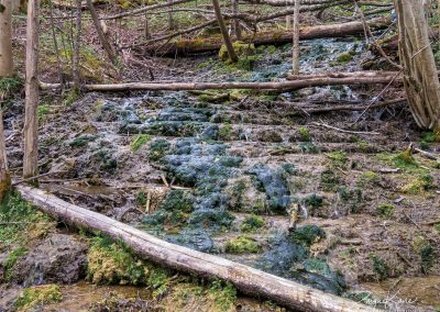 Kalnabeitu-udenskritums-Uzzini-Iepazisti-004